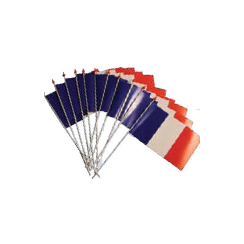 Lot 10 drapeaux France