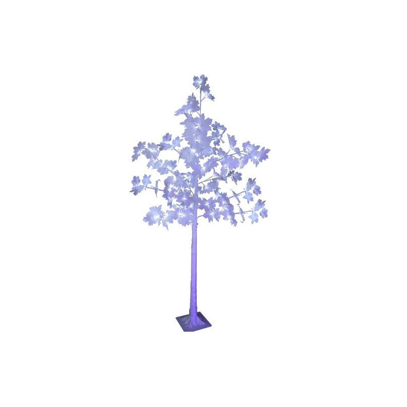 Arbre blanc lumineux