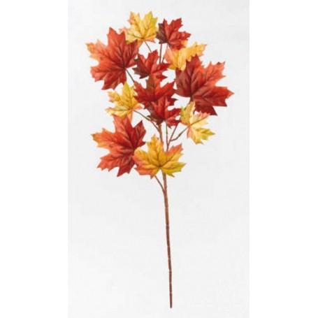 Branche de feuilles automne