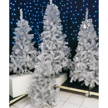 SAPIN ARGENT