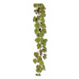 Guirlande de vigne