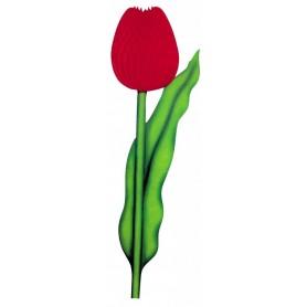 Tulipe papier alvéolé
