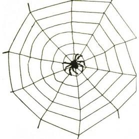 Toile et araignée