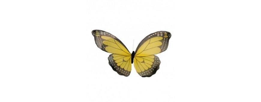 Papillon géant